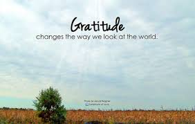 gratitude changes the way look at the world